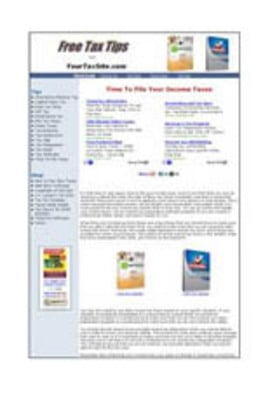 Product picture Income Tax Tips Website