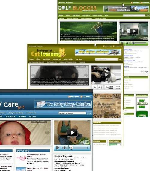 Product picture 3 Niche Blog (Baby Care,Golf,Cat Training)